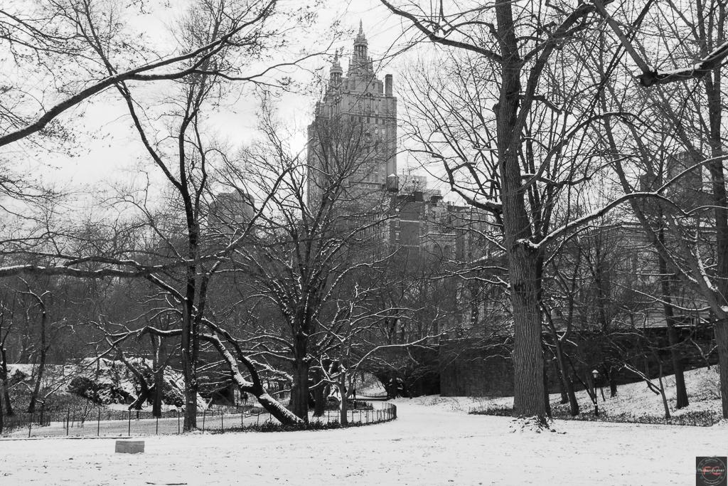 Central Park BN