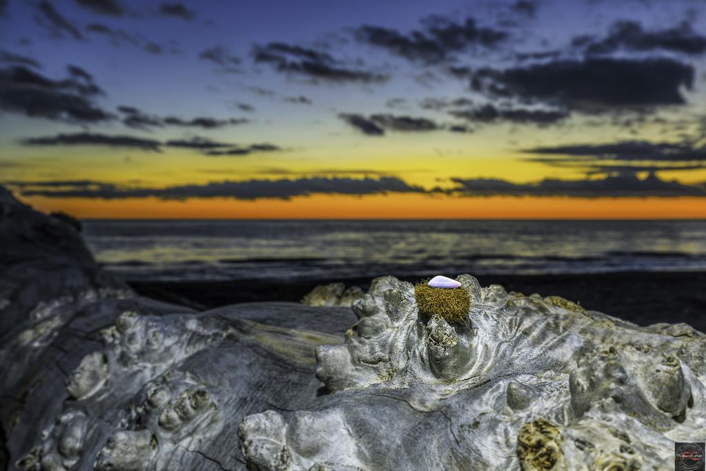 Still life al tramonto